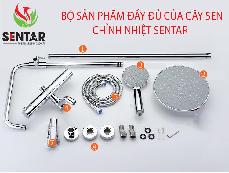 SEN-CAY-TAM-CHINH-NHIET